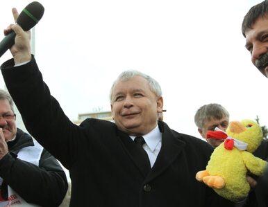 Kaczyński: Polska potrzebuje polskiego rządu