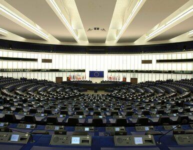 Wybory do PE 2019. Tak wygląda podział mandatów
