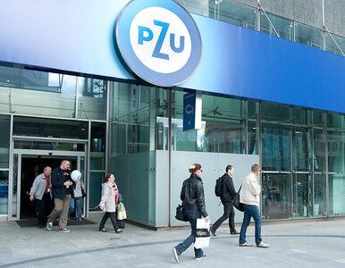 Państwo chce sprzedać akcje PZU?