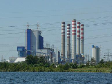 Kiedy przywrócą prąd? PGE, Tauron, ENEA i Energa wydają komunikaty