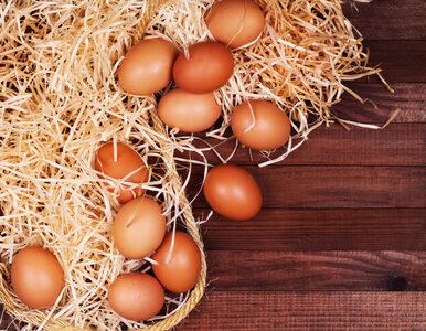 5 nowych sposobów użycia jajek – czy już je znasz?