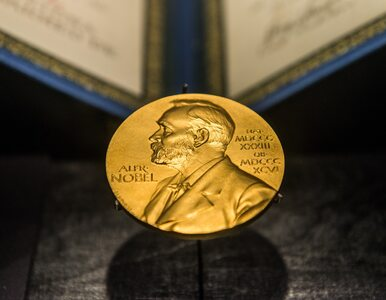 Przyznano Nagrodę Nobla z dziedziny fizyki. Trzej naukowcy wyróżnieni