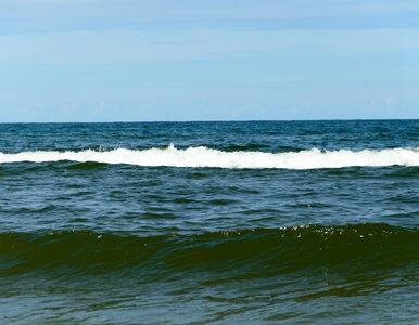 Zakaz kąpieli w niemal 30 miejscach nad Bałtykiem. Najgorsza sytuacja...