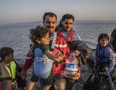 Prawie 8 tysięcy imigrantów przedostało się do Macedonii w ciągu doby