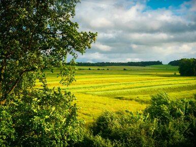 ARiMR: Ruszają kolejne formy wsparcia dla rolników