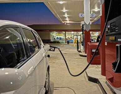 Za kilkanaście dni ceny paliw zaczną spadać