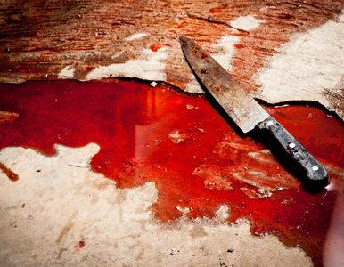 Chełm. 14-latek zabił macochę i ranił przyrodniego brata