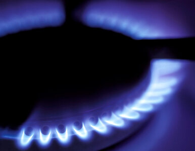Anglia ma więcej gazu łupkowego niż Polska?