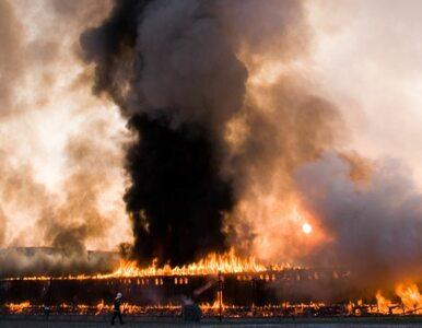 Pożar w suszarni drewna. Straty na pół miliona złotych