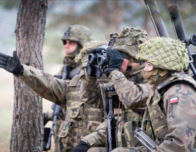 Ukraiński portal o Polakach: Gdyby zaatakowali, w pięć dni osiągnęliby...