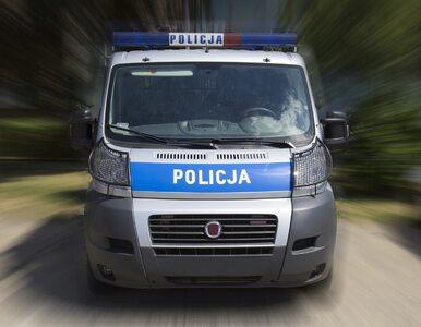 356 wypadków i 30 ofiar śmiertelnych. Policja podsumowała majówkę