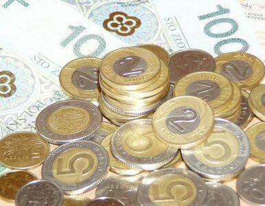Rostowski przekaże 500 milionów złotych na walkę z bezrobociem. PiS: to...