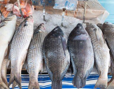 Jak nieprzetworzone mięso, drób i ryby wpływają na układ krążenia i...