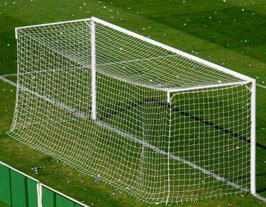 Premier League wprowadza technologię goal-line
