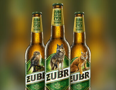 Z etykiet znanego piwa znika jego znak rozpoznawczy. O co chodzi w nowej...