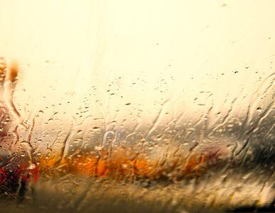 Pogoda na dziś: Umiarkowanie ciepło, może padać