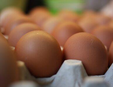 Założył się, że zje 50 surowych jajek. Zmarł po 41