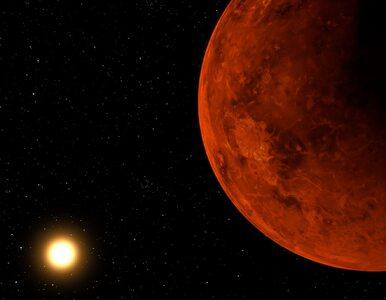 Dr Janusz Pętkowski: Albo nie rozumiemy chemii, albo na Wenus istnieje...