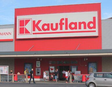 """W Kauflandzie pojawiły się produkty z owadów. """"Moc smaku w robaku"""""""