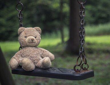Ponad 3 tys. materiałów o treści pedofilskiej. 34 osoby zatrzymane