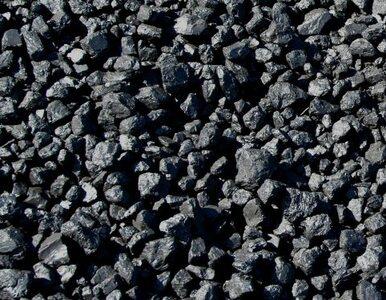Pracownicy kopalni Piast kradli węgiel? Zatrzymano kilkanaście osób