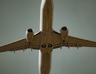 Niebezpieczny incydent na lotnisku. Samolot wylądował z ptakiem wbitym w...