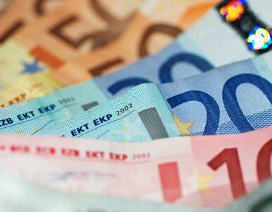 """EBC pomoże zadłużonym krajom. """"Zrobimy wszystko, by zachować euro"""""""