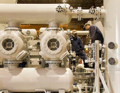 Wydobycie gazu z łupków może ruszyć już w 2014 roku