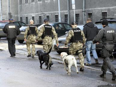 Surowe wyroki dla kolejnych 7 członków gangu Pikola