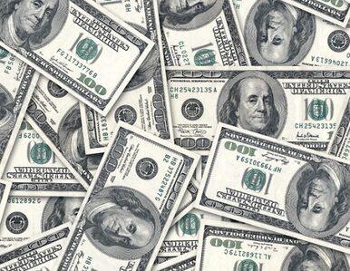 Nowy Jork: 22-letnia Rosjanka kupiła mieszkanie za 88 mln dolarów. To...