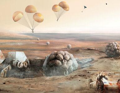 Tak będą mieszkać kolonizatorzy Marsa. Znani projektanci pokazali...