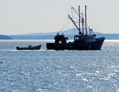 Torpedy na dnie Bałtyku