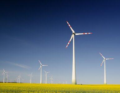 Sposób na wyjście z kryzysu? Mogą pomóc odnawialne źródła energii