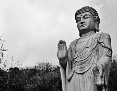 Sri Lanka: turyści obrazili uczucia buddystów. Trafią do więzienia?