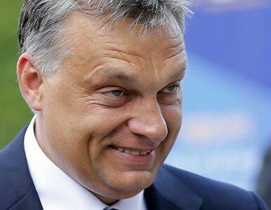 Węgry: koalicja Orbana traci poparcie