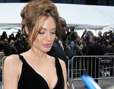 Angelina Jolie staje w obronie słoni