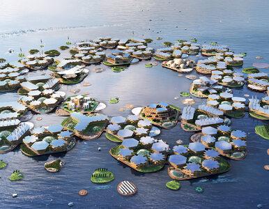"""Projekt rodem z filmu """"Wodny Świat"""". To miasteczko może uratować tysiące..."""