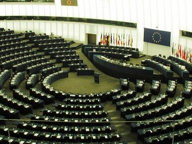 Sondażowa lista wybranych europosłów