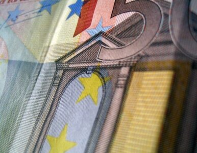 Kursy euro i dolara zrównają się w ciągu roku?