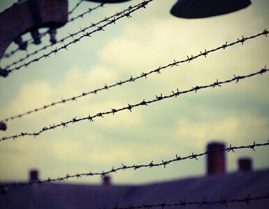 Europejski Nakaz Aresztowania za nadzorczynią SS w obozie pracy. Kobieta...