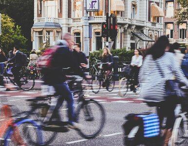 Centra miast bez samochodów. Tak będzie wyglądać przyszłość