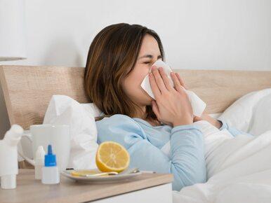 GIS ostrzega przed groźnym wirusem grypy. W Australii zabił kilkanaście...