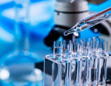 Jak HIV wpływa na pracę mózgu? Nowe ustalenia naukowców