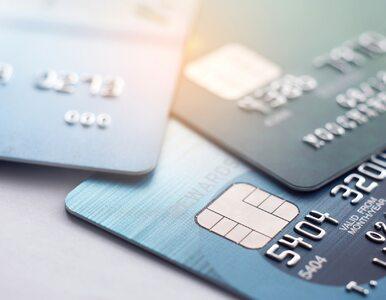 Duży wzrost liczby wydanych kart kredytowych. Zakupy internetowe...