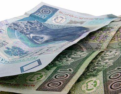 Polska nie wykorzystuje środków Międzynarodowego Funduszu Walutowego