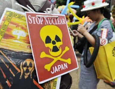 Japonia: Fukushima będzie państwową elektrownią atomową